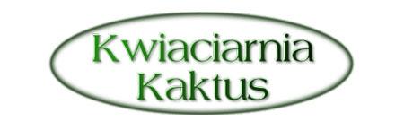 Kwiaciarnia Kaktus Rzeszów